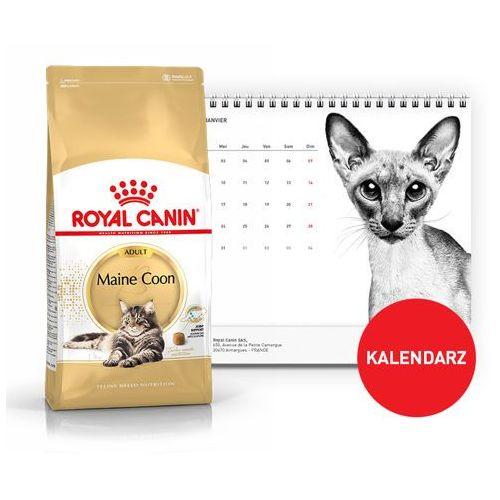 maine coon adult 31 10kg + kalendarz 2018 marki Royal canin