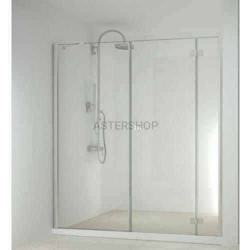 SMARTFLEX drzwi prysznicowe do wnęki skrzydłowe, prawe 180x195cm D1281R/D11100