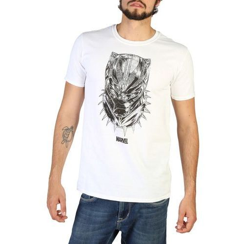 T-shirt koszulka męska MARVEL - RBMTS242-34, 1 rozmiar