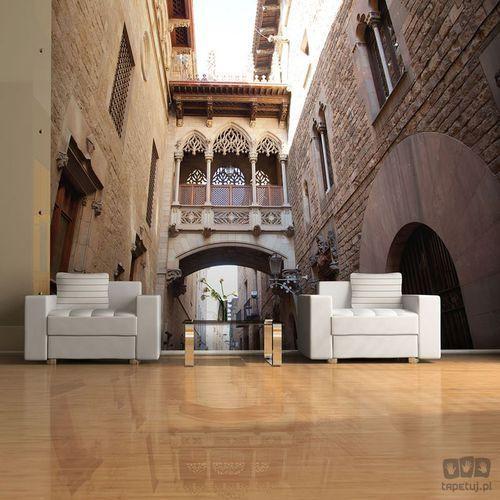 Murando Fototapeta barcelona palau generalitat in gothic barrio 100404-98
