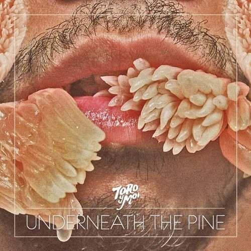 Toro Y Moi - Underneath The Pine (0677517005912)