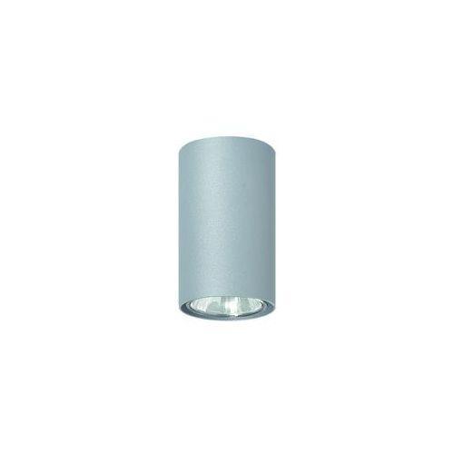 Lampa sufitowa Simba popiel, 483/C