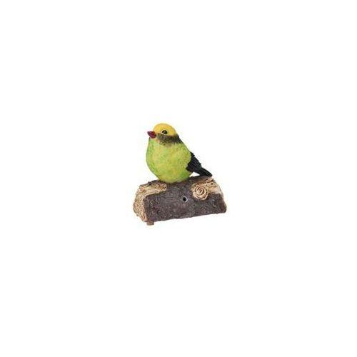 Dekoracyjny ptaszek śpiewający na gałązce, ozdobna figurka z poliresingu z pozytywką