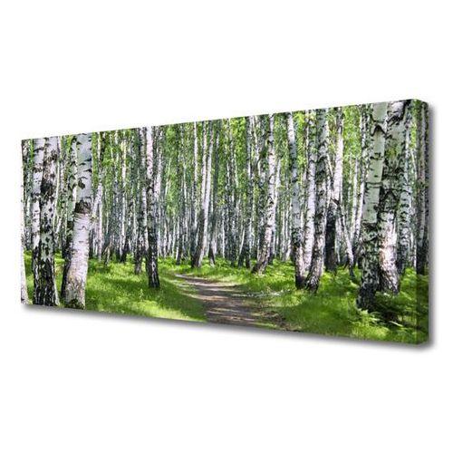 Obraz na Płótnie Las Ścieżka Natura Drzewa