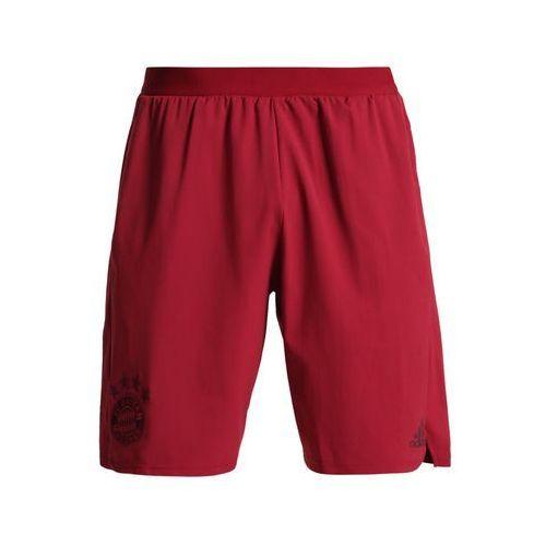 adidas Performance FC BAYERN MÜNCHEN Krótkie spodenki sportowe maroon/burgundy (4058032046165)