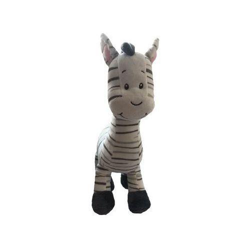 Zebra 33 cm - marki Axiom