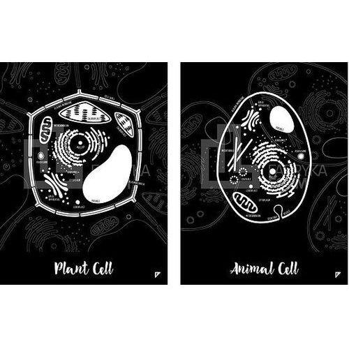 Plakat Animal Cell i Plant Cell w zestawie 2 szt., zesplanen3040