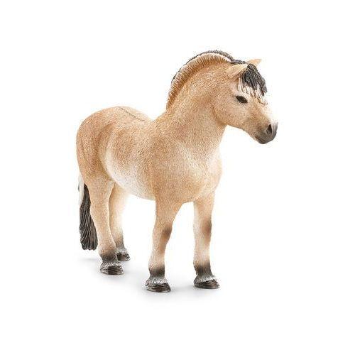 Koń rasy Fiord (4005086137530)