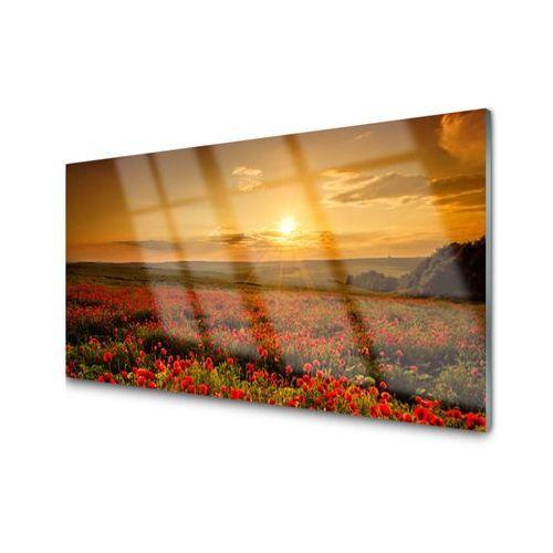 Obraz Akrylowy Pole Maki Zachód Słońca Łąka