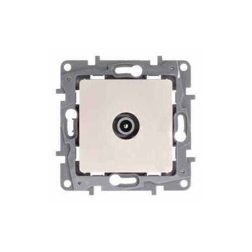 Legrand Gniazdo antenowe niloe 764652 przelotowe tv męskie 14db kremowe (3414970684837)