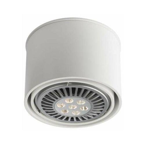 Spot LAMPA sufitowa MIKI 7018 Shilo natynkowa OPRAWA okrągły DOWNLIGHT biały, kolor Biały