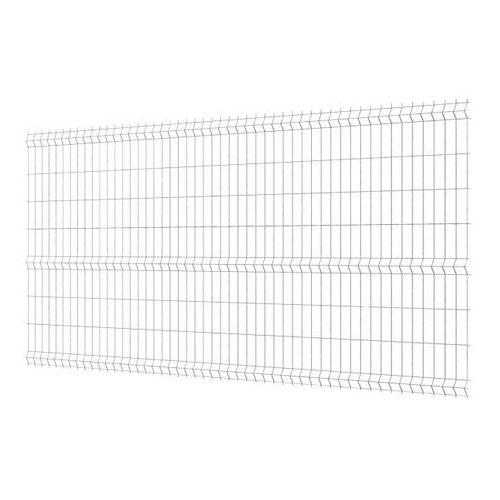 Polargos Panel ogrodzeniowy 3d 173 x 250 cm oczko 5 x 20 cm ocynk