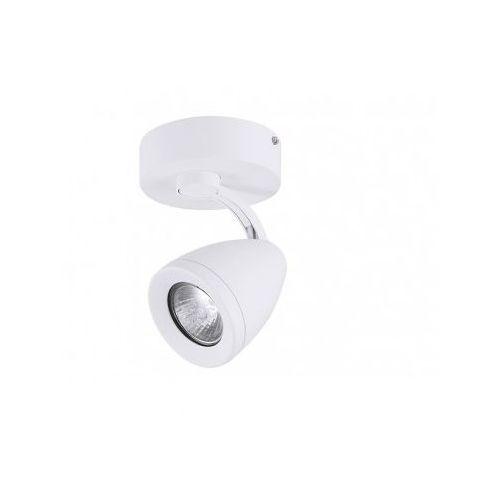 Azzardo Albico 1 white kinkiet plafon (5901238412403)