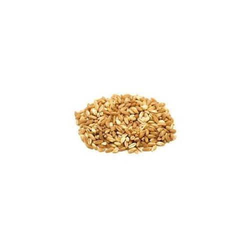 Horeca - surowce (nr w nazwach = nr brygady pak.) Orkisz (ziarno) bio (surowiec) (25 kg) 8