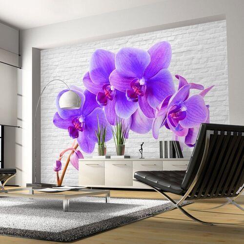 Artgeist Fototapeta - fioletowe pobudzenie