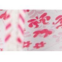 - japonki dziecięce marki Ipanema