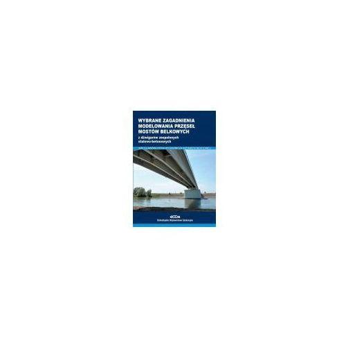 Wybrane zagadnienia modelowania przęseł mostów (9788371252808)