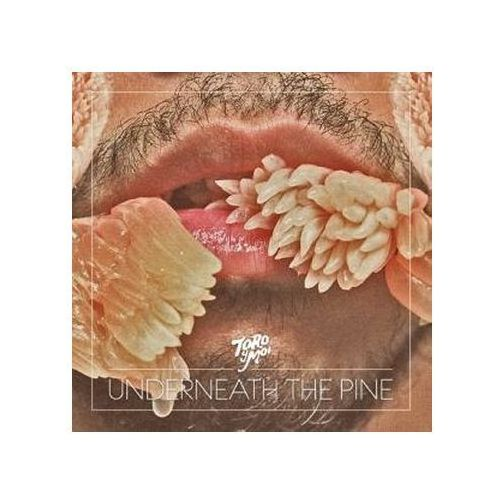 Toro Y Moi - Underneath The Pine (0677517005929)