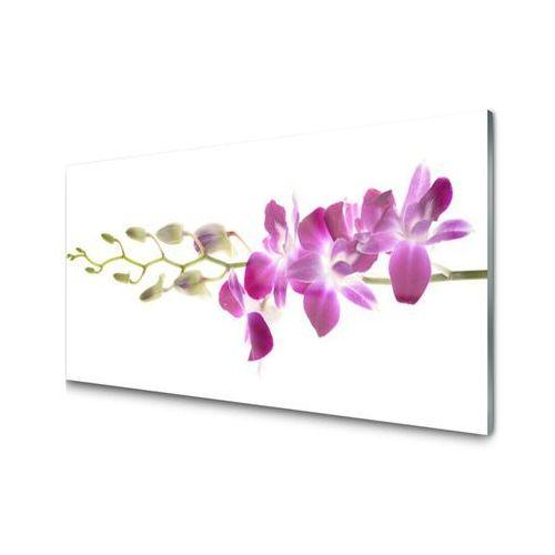 Tuluppl Obraz Akrylowy Kwiaty Roślina Natura Best 24