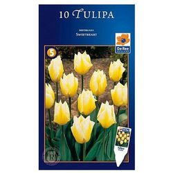 Tulipany Sweetheart