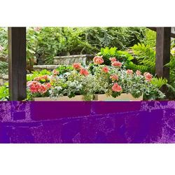 Kwietnik Begonia Rattan z wkładem 19x56x19.5 cappuccino, 5900119566259