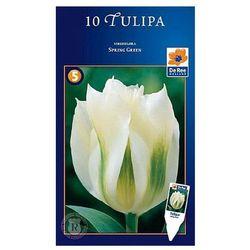 Tulipany Spring Green (8711148316060)