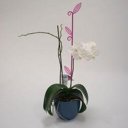Pręcik do storczyków liść, przeźroczysty fiolet, 2 szt. marki Plastia