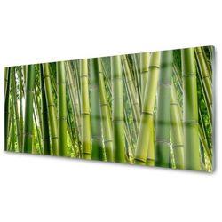 Obraz szklany bambusowy las pędy bambusa marki Tulup.pl