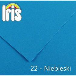 Brystol  Iris B1/240g niebieski 25ark., Canson z MaxiBiuro