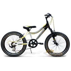 Rower Mountrek Team Pro z kategorii [rowery dla dzieci]