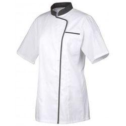 Expression bluza, szara lamówka, krótki rękaw | różne rozmiary | XS - XXXL z kategorii Pozostała odzież