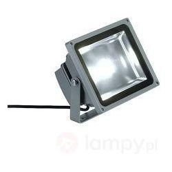 Reflektor LED 231111, 1x30 W, LED wbudowany na stałe, 3000 lm, 5700 K, IP65, 231111
