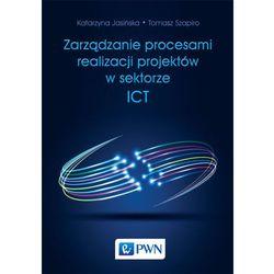 ZARZĄDZANIE PROCESAMI REALIZACJI PROJEKTÓW W SEKTORZE ICT - wyprzedaż (ilość stron 334)