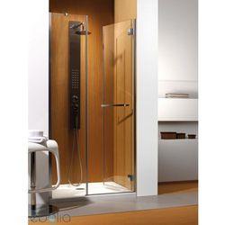 Drzwi wnękowe 110 Carena DWJ Radaway (34333-01-01NR) - sprawdź w wybranym sklepie