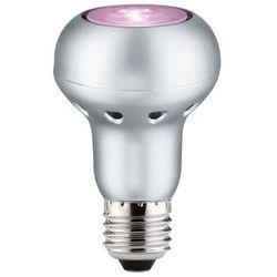 LED R63 6W E27 230V różowy - sprawdź w Kuis.pl