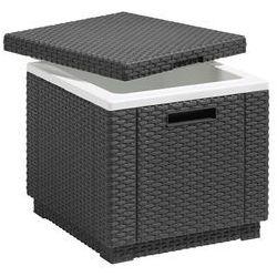 Rojaplast pojemnik do chłodzenia ice cube (8711245121253)