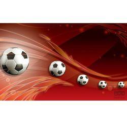 Fototapeta Piłka Nożna 3386