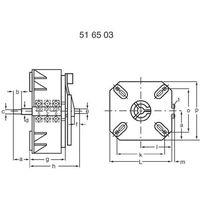 Thalheimer Transformator regulowany  ess 120, 230 vac 1 - 250 v 20 a (4016138118759)