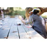 Podstawowy kurs wiedzy o winie