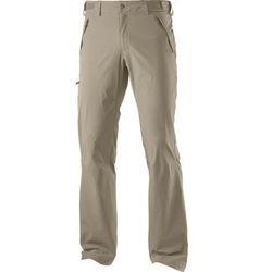 Spodnie Wayfarer Navajo, spodnie męskie Salomon
