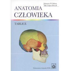 Anatomia człowieka. Tablice anatomiczne, pozycja wydana w roku: 2012