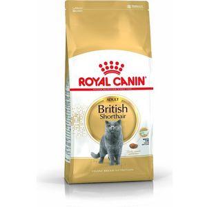 ROYAL CANIN British Shorthair Adult 2kg (3182550756419)