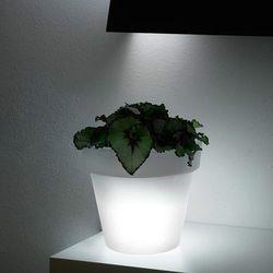 MINI IKON donica podświetlana LED