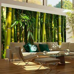 Fototapeta - Azjatycki las bambusowy bogata chata