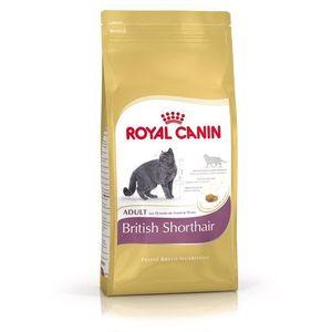 ROYAL CANIN British shorthair 0.4 kg- RÓB ZAKUPY I ZBIERAJ PUNKTY PAYBACK - DARMOWA WYSYŁKA OD 99 ZŁ