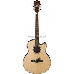 Ibanez AEL FF10 NT gitara elektroakustyczna, kup u jednego z partnerów