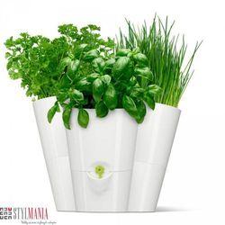 Potrójna doniczka na zioła EMSA Fresh Herbs Trio biała EM-515352 - produkt z kategorii- doniczki i podstawki