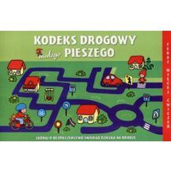 Kodeks drogowy małego pieszego, rok wydania (2009)