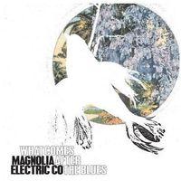 Magnolia Electric Company - What Comes After The Blues z kategorii Muzyka alternatywna