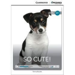 So Cute! Cambridge Discovery Education Interactive Readers (z kodem), rok wydania (2014)